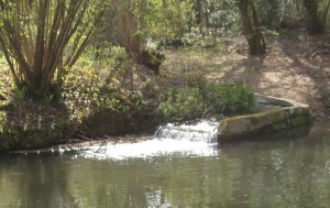 Broad Oak stream CROPPED